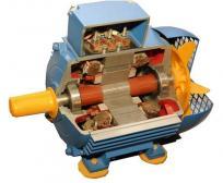 Изображение разреза асинхронного двигателя. в котором просматривается его устройство