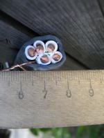 Фото пятижильного силового кабеля ВВГ 5х10 изготовленного по ГОСТ