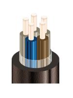 Изображение пятижильного кабеля КВВГЭ 5х1,5 с экраном для стационарной одиночной прокладки с целью подключения цепей измерения, сигнализации, управления и защиты