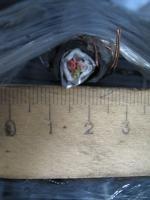 Фотография контрольного медного кабеля с экраном КВВГЭ 4х1,5 для стационарной одиночной прокладки