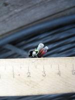 Фотография сечения силового алюминиевого кабеля АВВГнг 3х4 для стационарной групповой прокладки