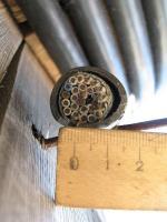 Фотография сечения медного экранированного контрольного кабеля КВВГЭнг-LS 27х2,5 для групповой прокладки в общественных помещениях при возможных помехах