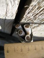 Фотография сечения силового алюминиевого кабеля АВВГнг 4х25 для стационарной групповой прокладки